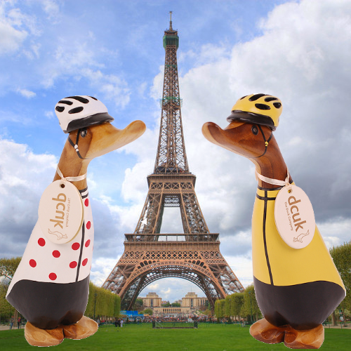 Cycling Ducks