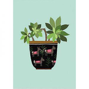 Succulent by Brie Harrison