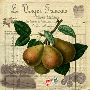 Pears by Bells of Suffolk
