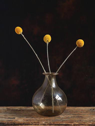 Bulle Glass Vase
