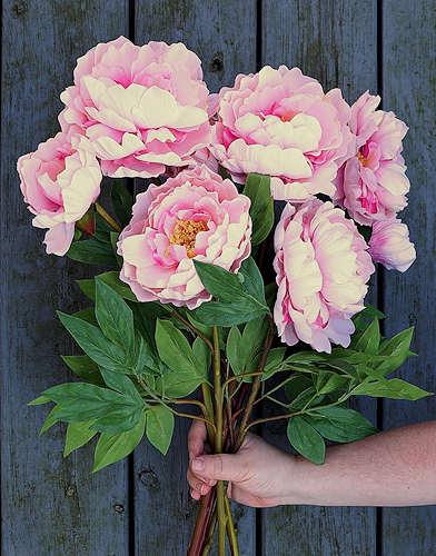 Peonies Faux Flowers